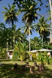 Andaman Resort - garden bungalows